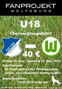 Plakat Hoffenheim